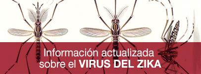 Información actualizada sobre el virus del Zika